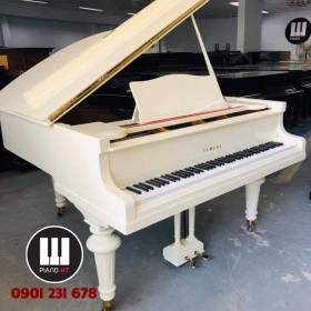 Grand Piano Yamaha No20