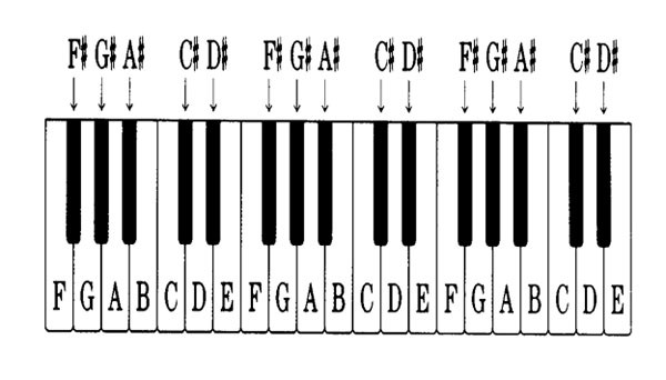 4-Hướng-dẫn-xem-ký-hiệu-phím-đàn-piano-đơn-giản-dễ-nhận-biết