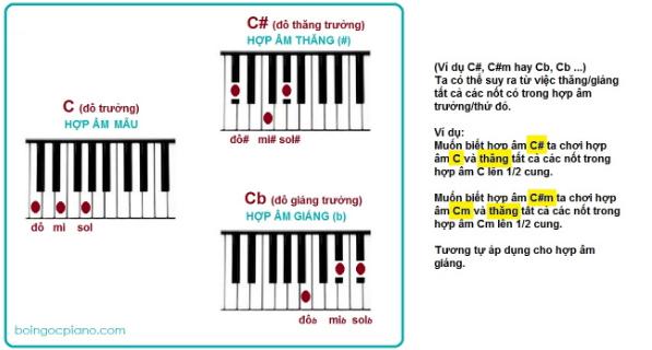 hợp âm cơ bản trên đàn piano