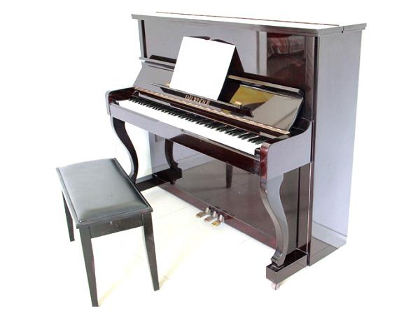 Đàn piano cơ Earl Windson tại pianoht.vn